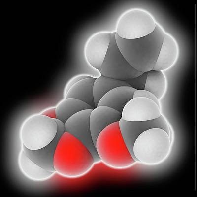 Nutmeg Photograph - Myristicin Molecule by Laguna Design