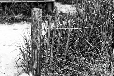 Photograph - Myrtle Beach Dune Fence Mono by John Rizzuto