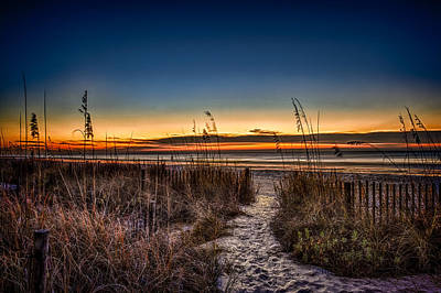 Photograph - Myrtle Beach Path by Joshua Minso