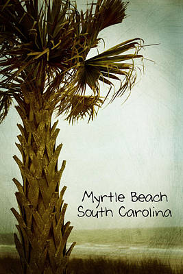 Photograph - Myrtle Beach Sc by Karol Livote