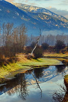 Photograph - Myrtle Creek Reflections by Annie Pflueger