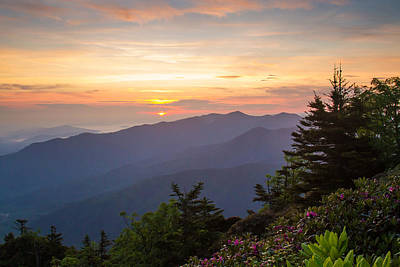 Myrtle Point - Mt Leconte Art Print