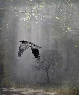 Mysterious Art Print by Angie Vogel
