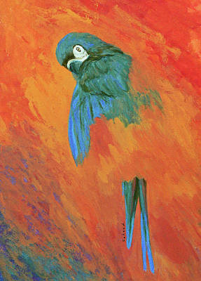 Art Print featuring the painting Mysterious Macaw by Margaret Saheed