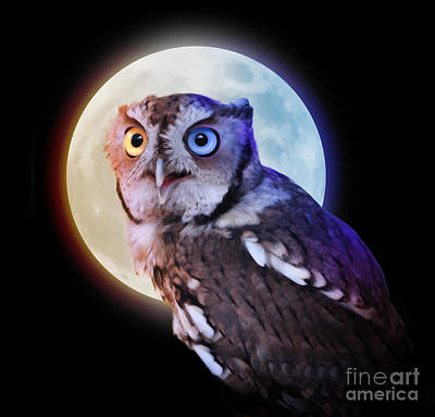 Mysterious Owl Animal At Night With Full Moon Art Print by Angela Waye