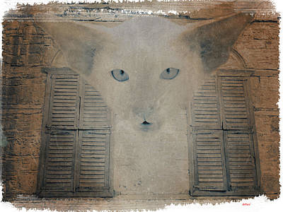 Cat Digital Art - Mystery Cat by KJ DePace