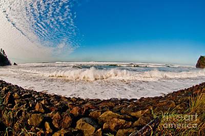 Tree Stump At Ocean Photograph - Mystery Waters by Van Scott
