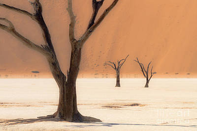 Art Print featuring the photograph Mystic Africa by Juergen Klust