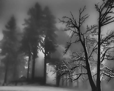 Photograph - Mystic Fog by Don Schwartz