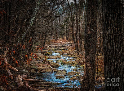 Photograph - Mystic by Larry McMahon