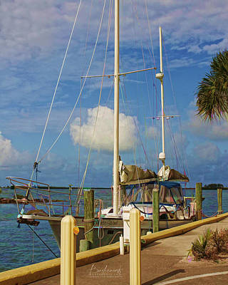 Photograph - Mystic Wind Sailboat Dunedin Florida by Robin Lewis
