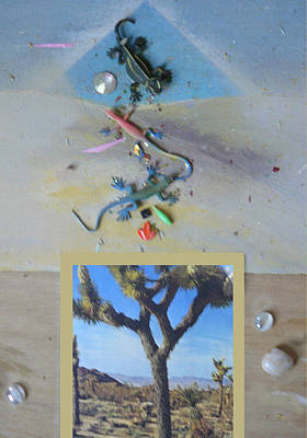 Mystical Desert  A Art Print by Mary Ann  Leitch