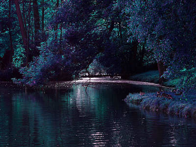 Photograph - Mystical Lake by Menega Sabidussi