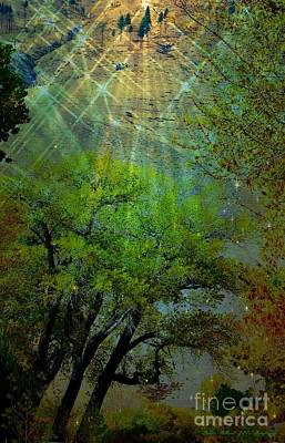 Photograph - Mystical Light by Bobbee Rickard