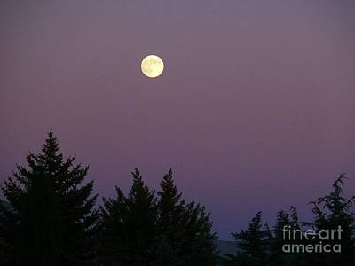Photograph - Mystical Moon by Jacquelyn Roberts
