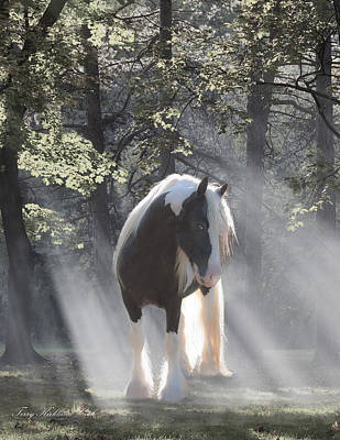 Gypsy Horses Digital Art - Mystical Morning by Terry Kirkland Cook