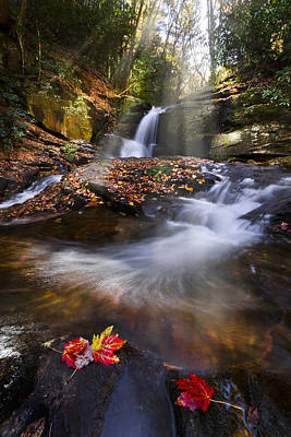 Smokys Photograph - Mystical Pool by Debra and Dave Vanderlaan
