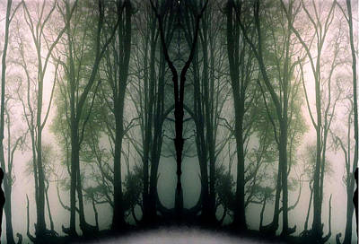 Abstract Other Worlds Digital Art - Mystical Woods Another World by Gill Piper