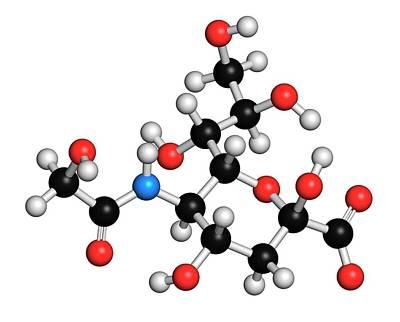 N-glycolylneuraminic Acid Molecule Art Print