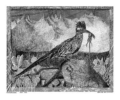 New Mexico Drawing - Roadrunner Beep Beep Beep by Jack Pumphrey