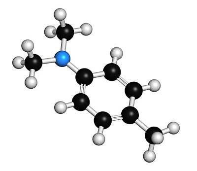 Polymer Photograph - N by Molekuul