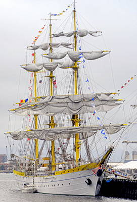 Photograph - N S Mircea Tall Ship by Caroline Stella