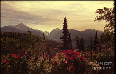 Art Print featuring the photograph Nadine's View by J Ferwerda