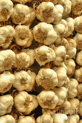 Photograph - Nafplio Greek Garlic by Deborah Smolinske
