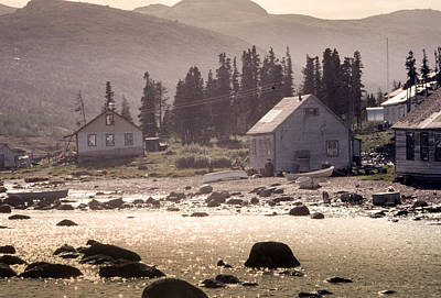 Photograph - Nain Labrador by Douglas Pike