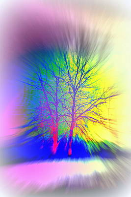 Naked Trees Can Also Be Colorful  Art Print by Hilde Widerberg