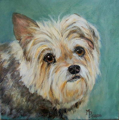 Painting - Nala by Maureen Pisano