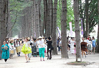 Photograph - Nami Island Festival by Kume Bryant
