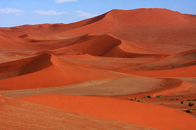 Photograph - Namibian Red Sand Dunes  by Aidan Moran