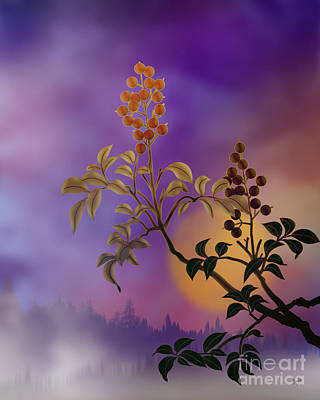 Purple Haze Digital Art - Nandina The Beautiful by Peter Awax