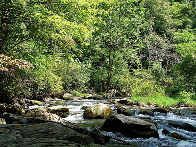 Photograph - Nantahala Stream 1 by Lew Davis