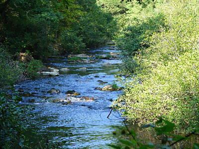 Photograph - Nantahala Stream 8 by Lew Davis