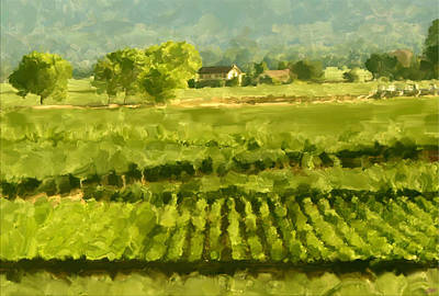 Red Wine Painting - Napa Detail by Paul Tagliamonte