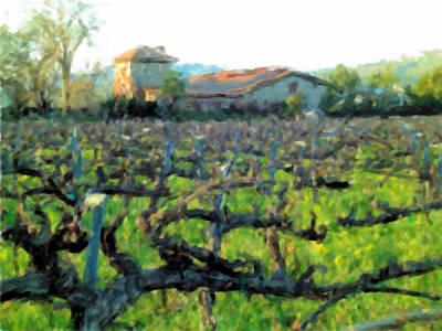Napa Valley Vineyard Digital Art - Napa Valley Winery In Winter by Bud Anderson