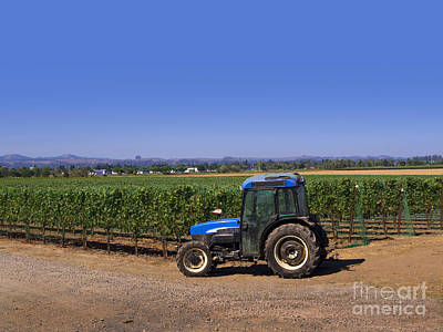 Photograph - Napa Vineyard Tractor by Brenda Kean