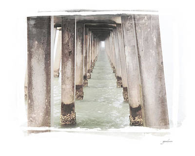 Photograph - Naples Fl Pier by Gary Gunderson