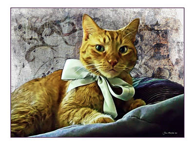 Photograph - Napoleon And The Ribbon by Joan  Minchak