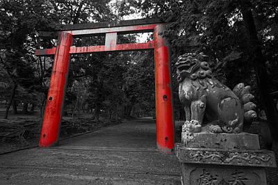 Nara Park Japan Art Print
