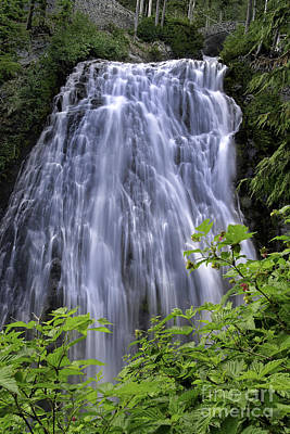 Photograph - Narada Falls by Tim Moore