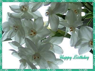 Mixed Media - Narcissi Birthday Greeting by Joan-Violet Stretch