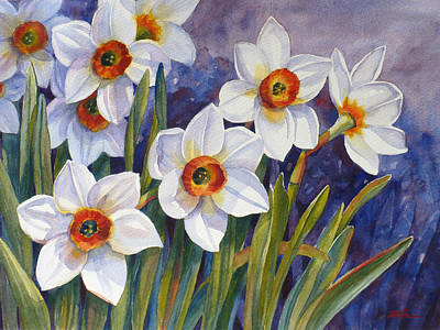 Painting - Narcissus Daffodil Flowers by Janet  Zeh
