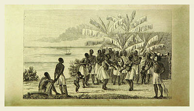 Observation Drawing - Narrative Of A Voyage Of Observation Among The Colonies by Litz Collection