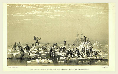 Narrative Of An Expedition In H.m.s Art Print by Litz Collection