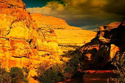 Capital Reef Photograph - Narrow Chasms by Jeff Swan