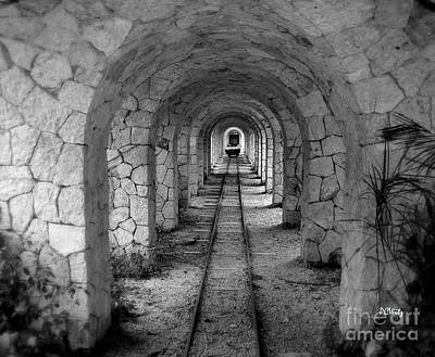 Photograph - Arched Narrow Gauge by Patrick Witz