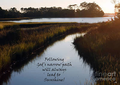 Photograph - Narrow Path Leads To Sunshine by Sandra Clark